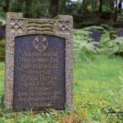 Aken-Begraafplaats-Waldfriedhof19-15