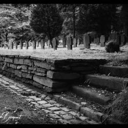 Aken-Begraafplaats-Waldfriedhof19-64