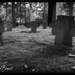 Aken-Begraafplaats-Waldfriedhof19-68