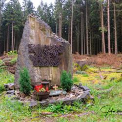 Aken-Begraafplaats-Waldfriedhof19-90