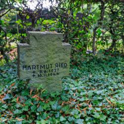 Duren-Friedhof-Rolsdorf-nieuwe-4