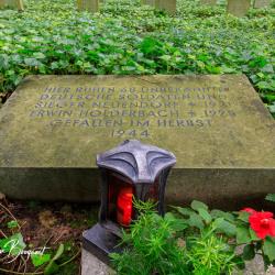 Merode-Ehrenfriedhof-Marienbildchen-5