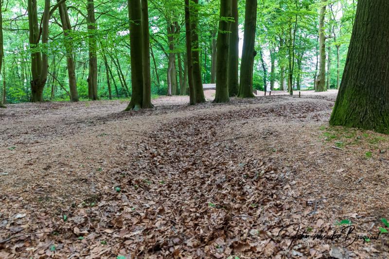 Oude loopgraven Grebbeberg